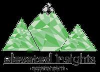 elevated insights transparent logo